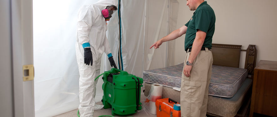 Middletown, CT mold removal process